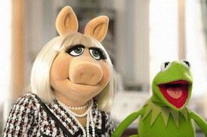 Die Muppets - Bild 1
