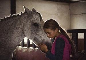 Ein Pferd für Klara - Bild 2