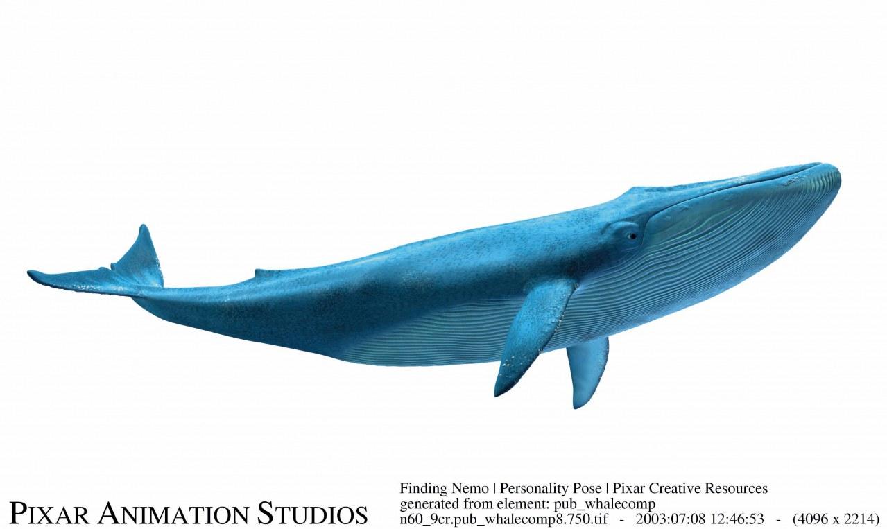 Findet Nemo 3D - Bild 19