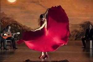 Flamenco, Flamenco - Bild 2