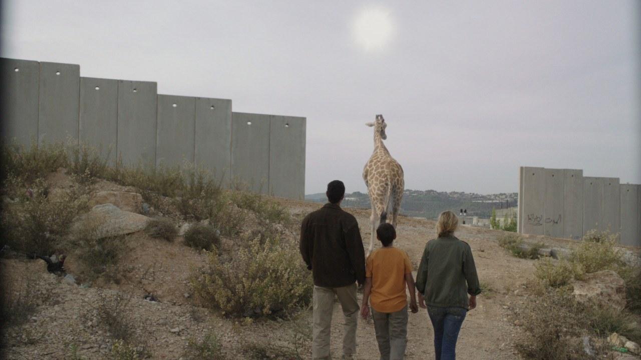 Giraffada - Bild 2