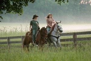Hannah Montana - Der Film - Bild 2