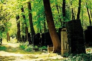 Im Himmel, unter der Erde - Der jüdische Friedhof Weißensee - Bild 1