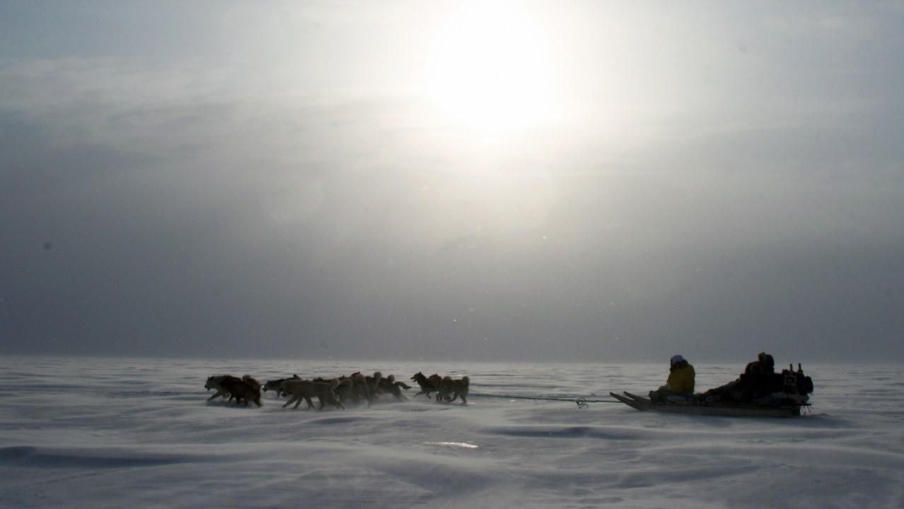 Inuk - Bild 5