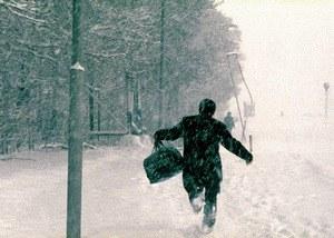 It's Winter - Bild 2