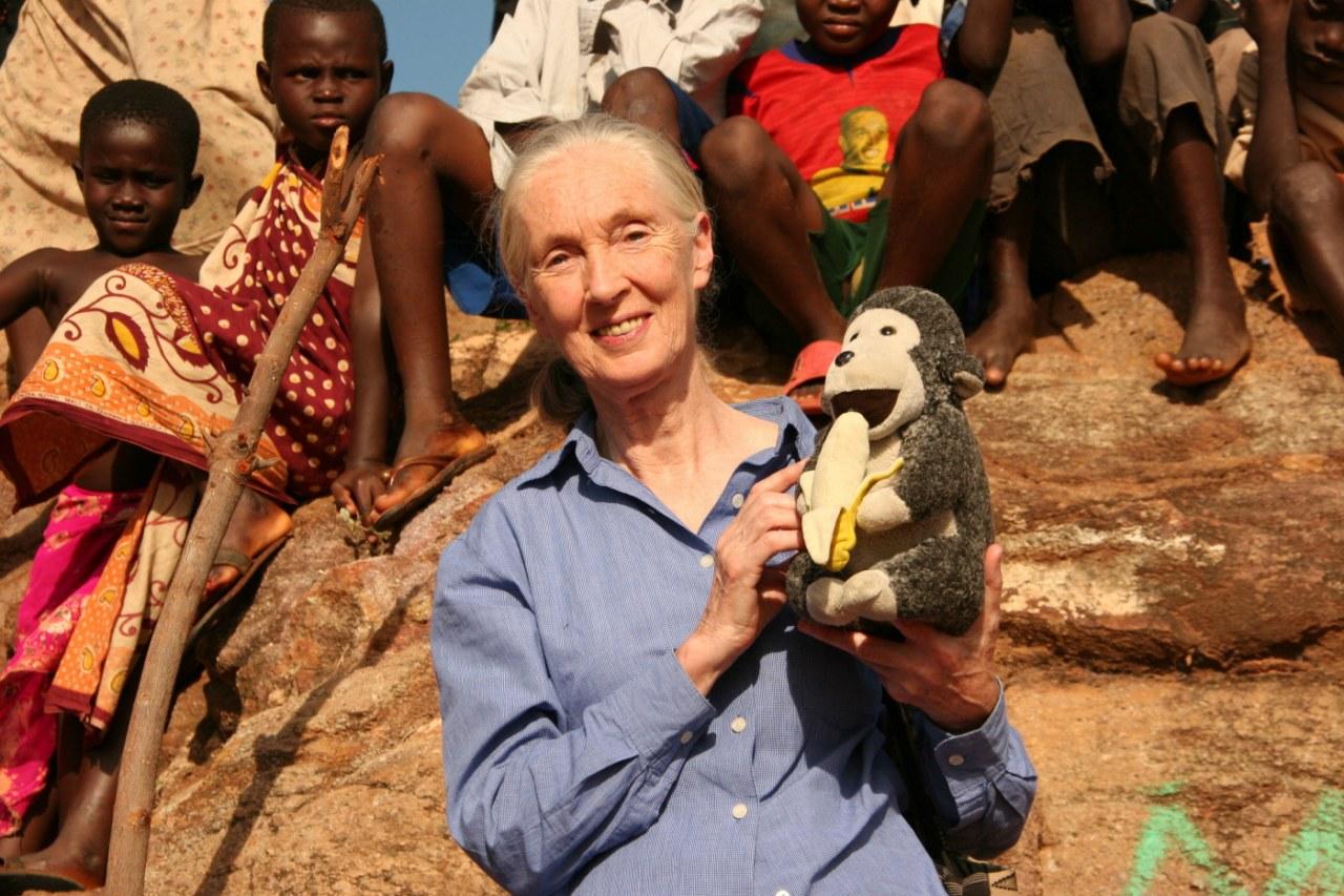 Jane's Journey - Die Lebensreise der Jane Goodall - Bild 15