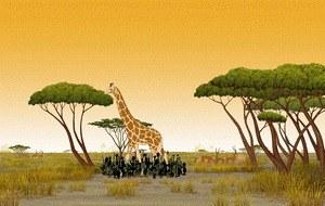 Kiriku und die wilden Tiere - Bild 1