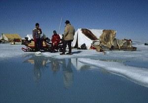 Königreich Arktis - Bild 1