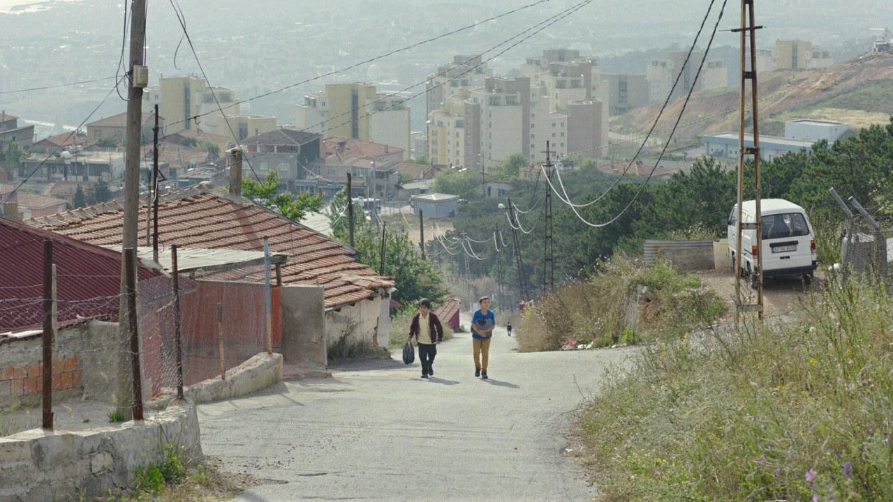 Köpek - Geschichten aus Istanbul - Bild 2