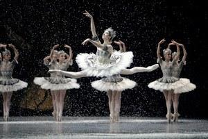 La Danse - Das Ballett der Pariser Oper - Bild 2