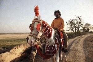 Live aus Peepli - Irgendwo in Indien - Bild 1