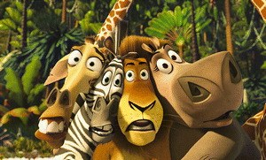 Madagascar - Bild 1