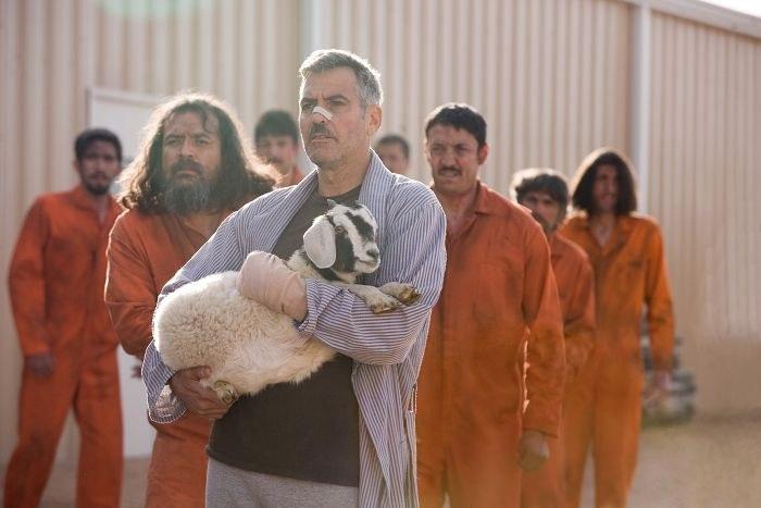 Männer, die auf Ziegen starren - Bild 11