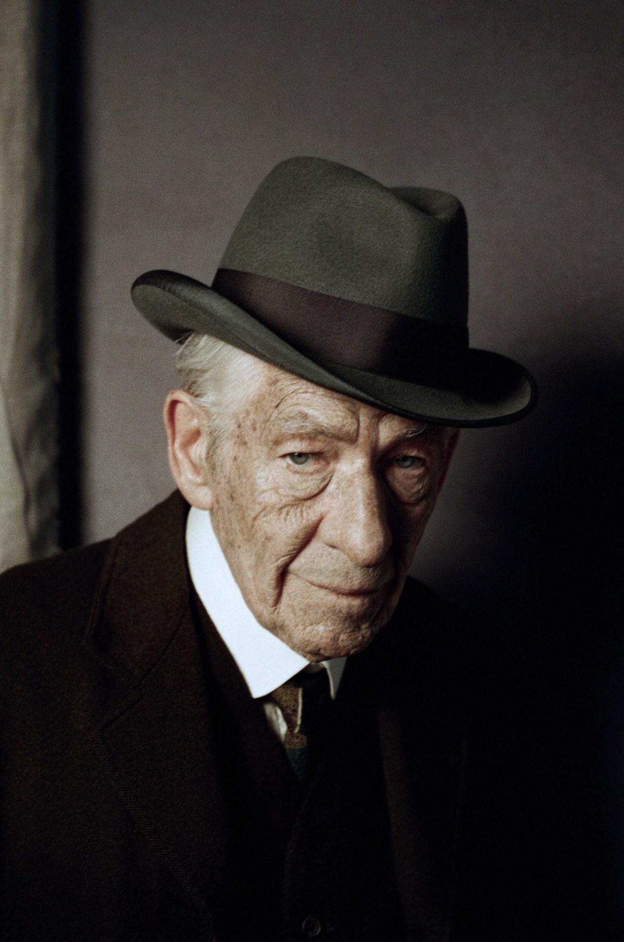 Mr. Holmes - Bild 2
