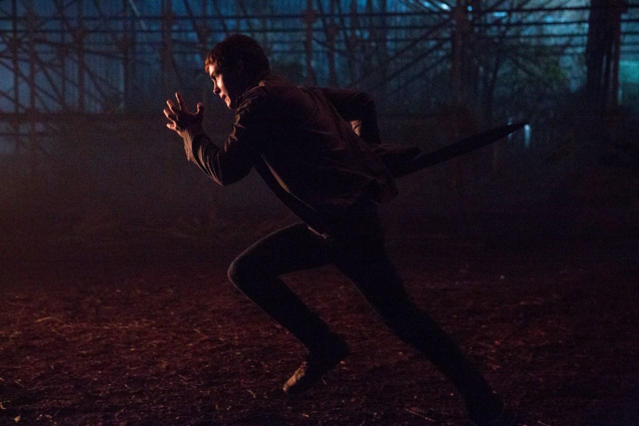 Percy Jackson: Im Bann des Zyklopen - Bild 6