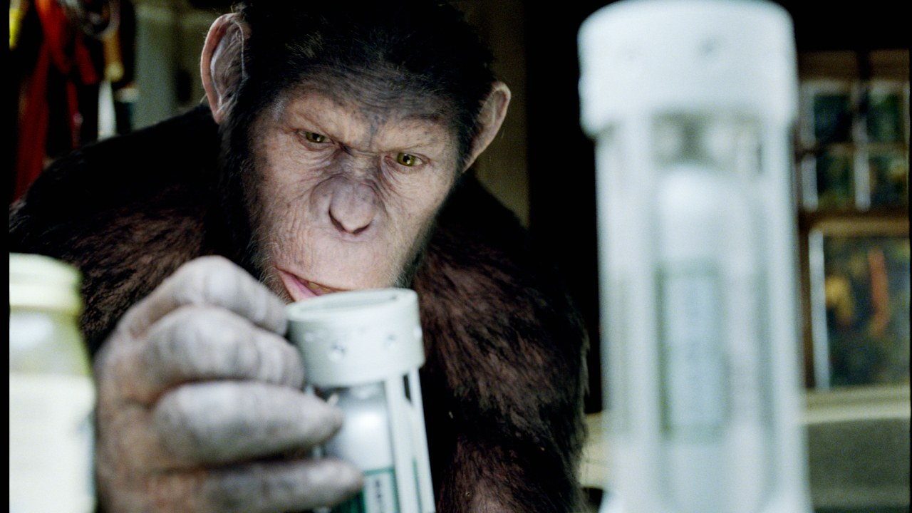Planet der Affen: Prevolution - Bild 1