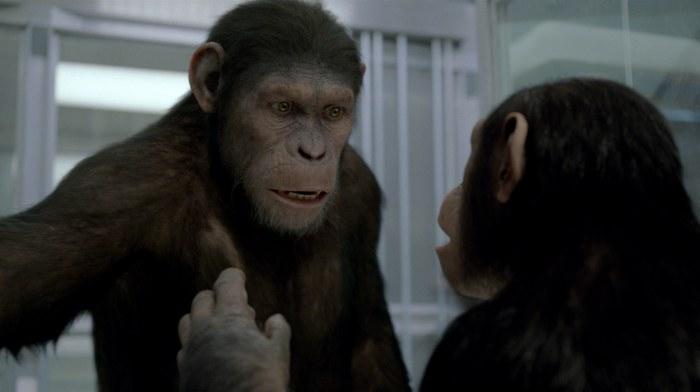 Planet der Affen: Prevolution - Bild 2