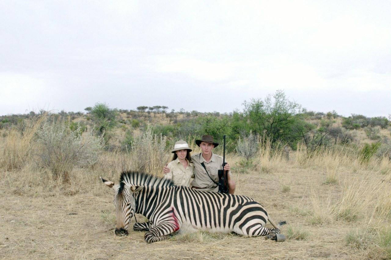 Safari - Bild 1