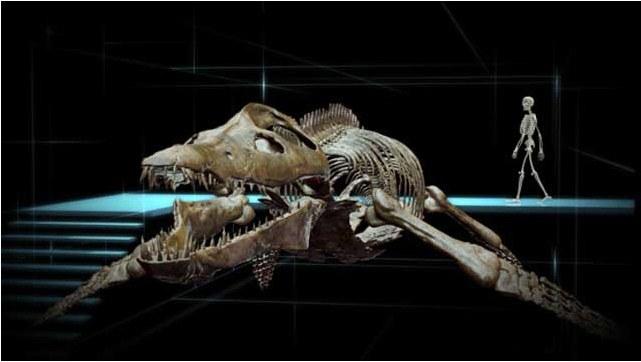 Sea Rex - Reise in die Zeit der Dinosaurier - Bild 3
