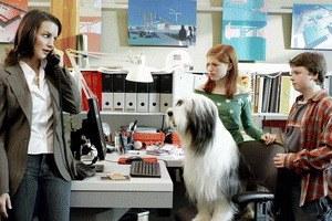 Shaggy Dog - Hör mal, wer da bellt - Bild 2
