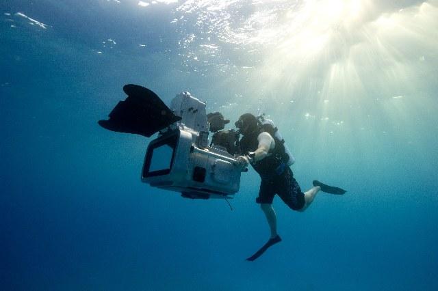 The Last Reef 3D - Bild 1