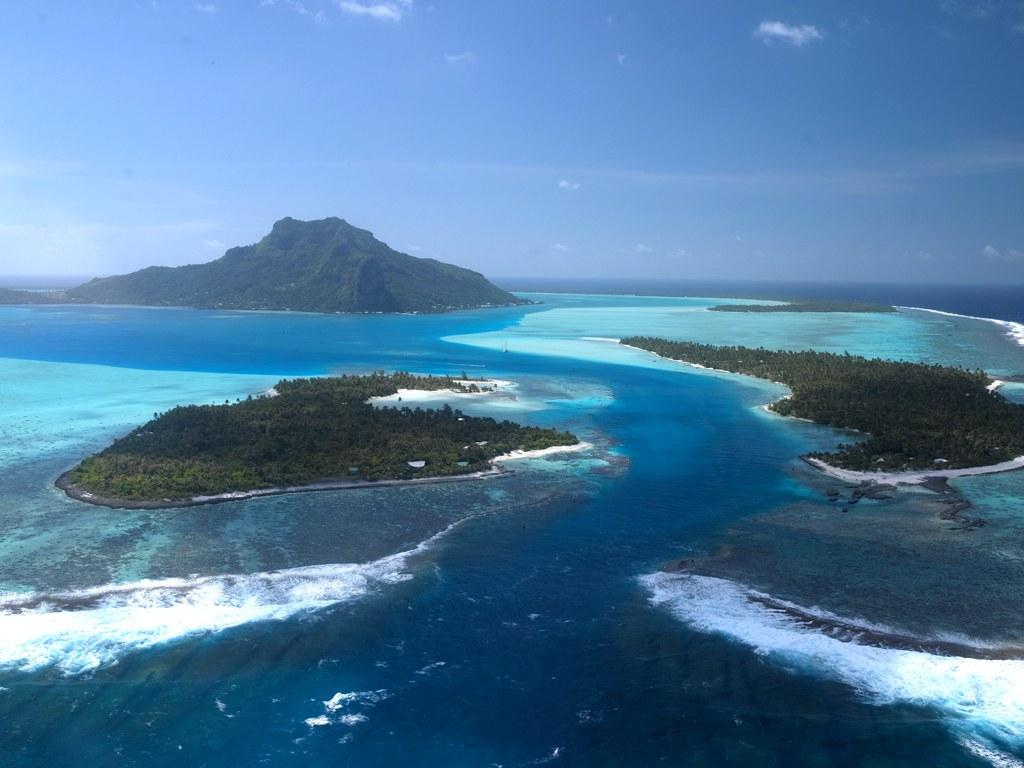 The Last Reef 3D - Bild 9