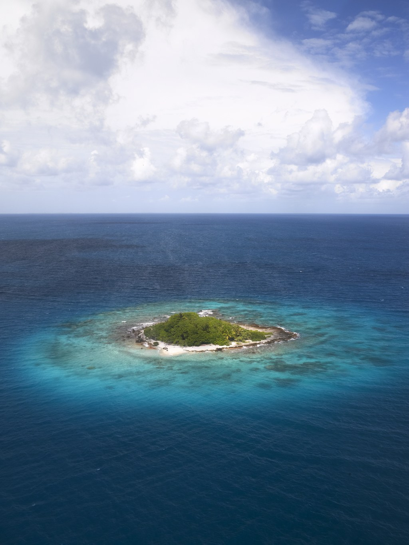The Last Reef 3D - Bild 10