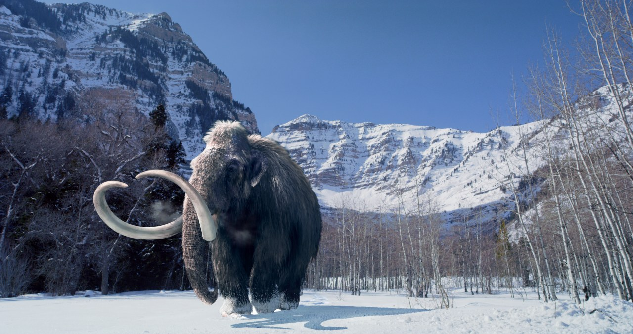 Titans of the Ice Age - Bild 12
