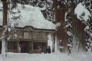 Unter Schnee - Bild 2