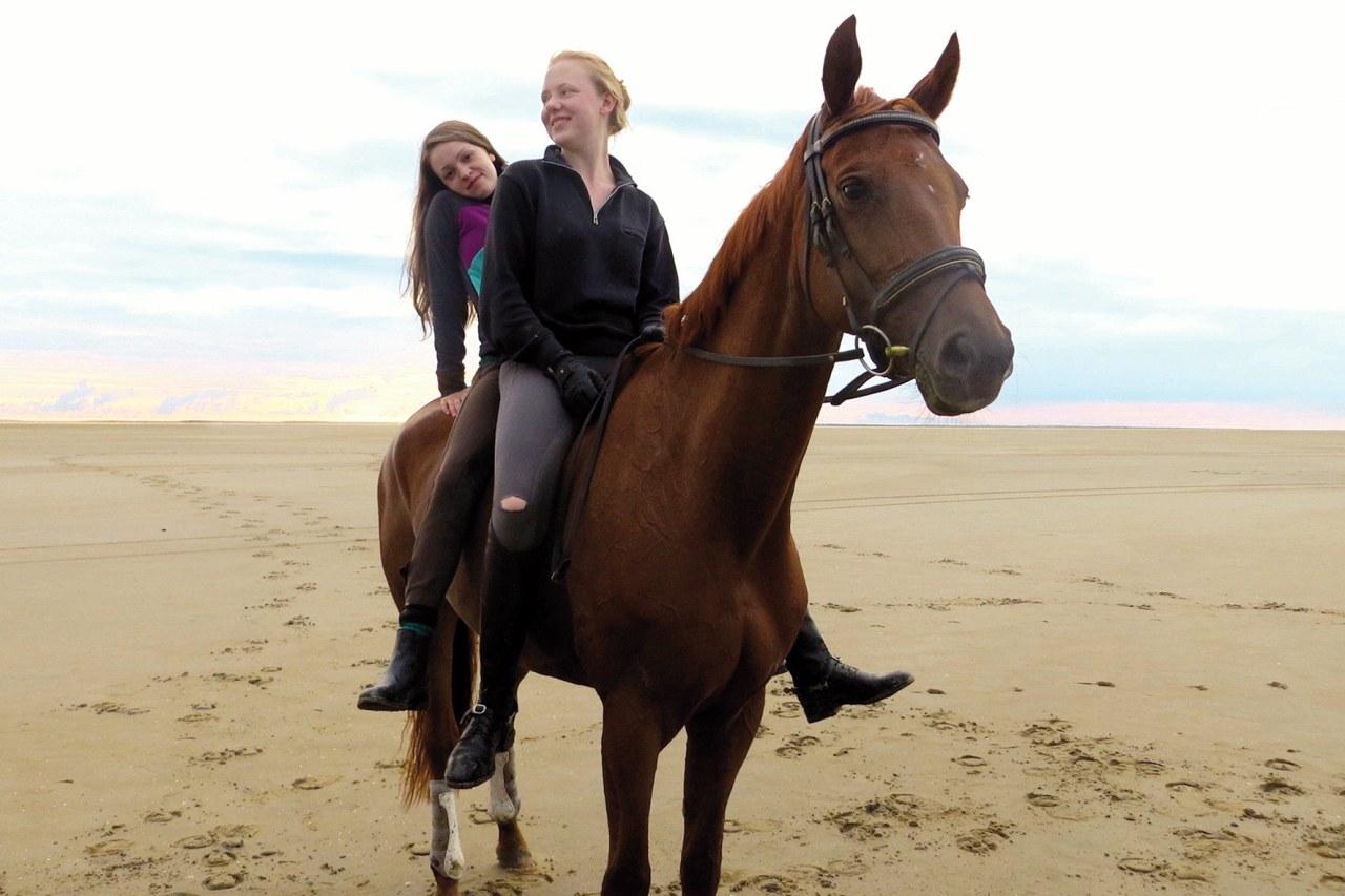 Von Mädchen und Pferden - Bild 1