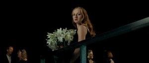 Weiße Lilien - Bild 1