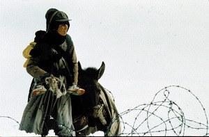 Zeit der trunkenen Pferde - Bild 1