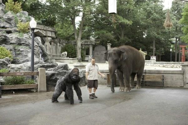 Der Zoowärter - Bild 4